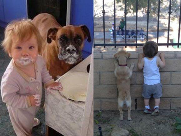 Psy i koty, jako najlepsi przyjaciele dziecka - 18 niesamowitych zdjęć, które wywołują szeroki uśmiech!